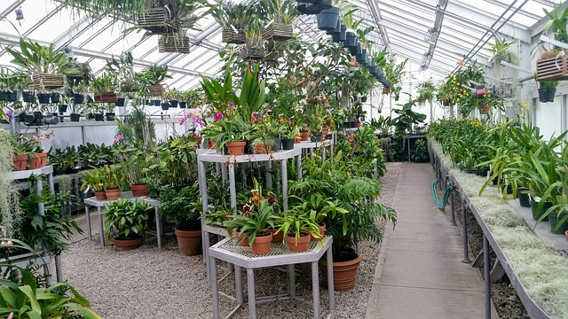 Advantages of indoor agriculture