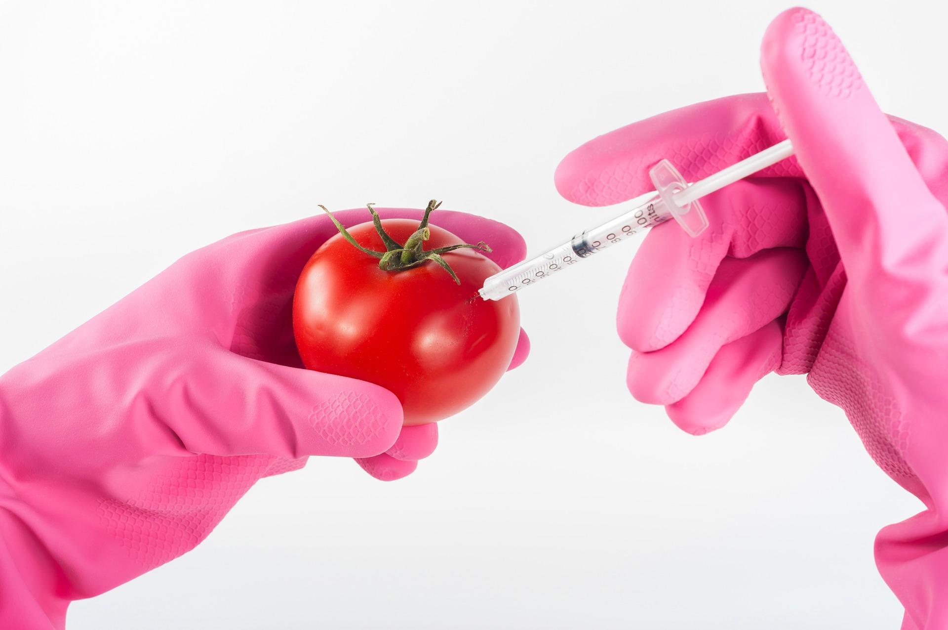 food biotech cons