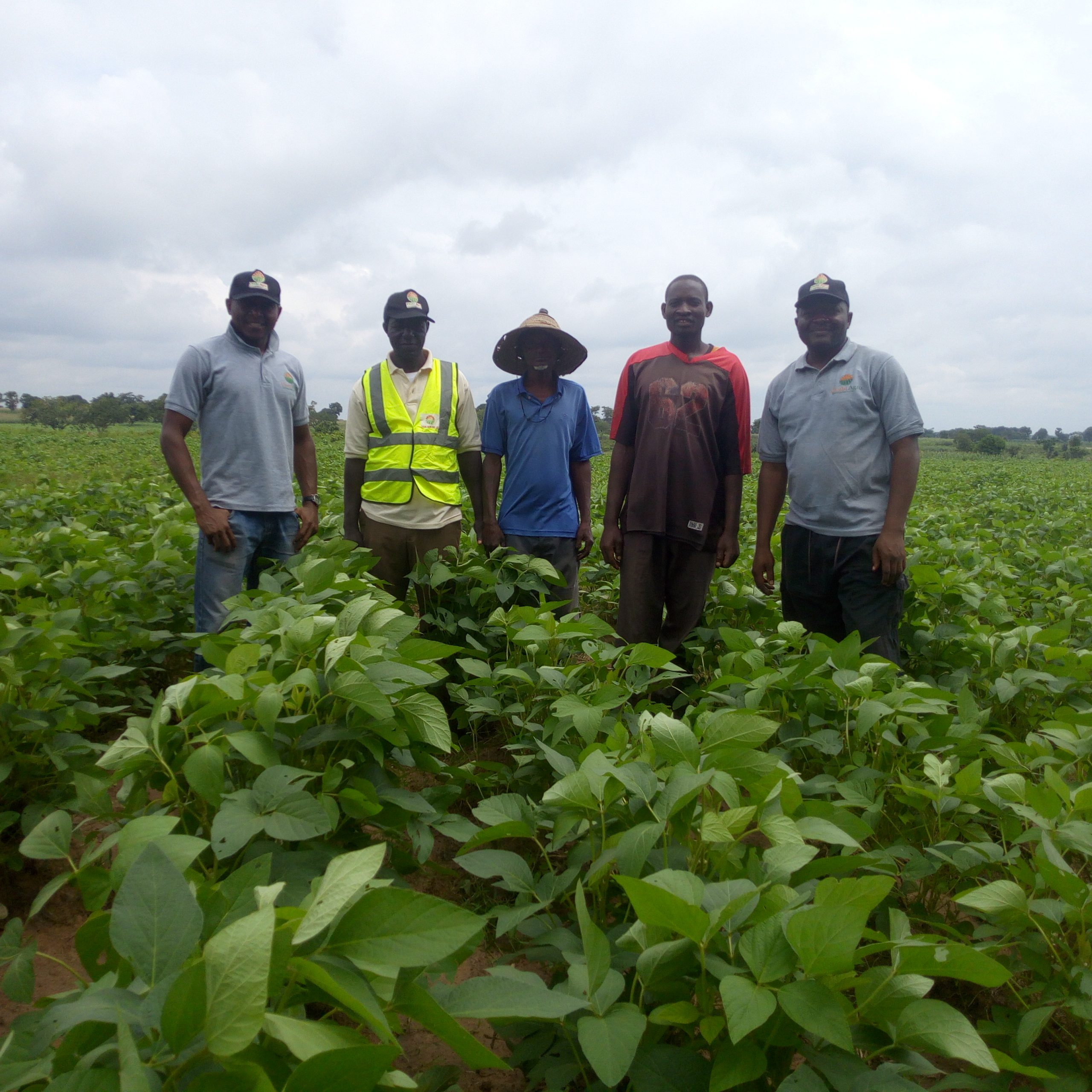How chubi agro crowd fund farms in nigeria