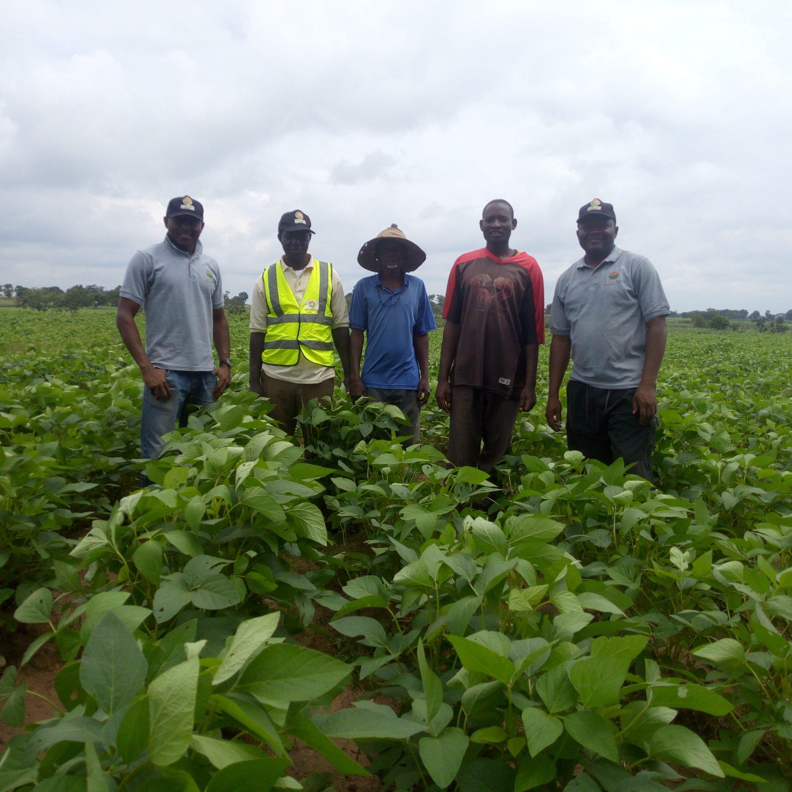 How chubi agro crowd fund farms in nigeria