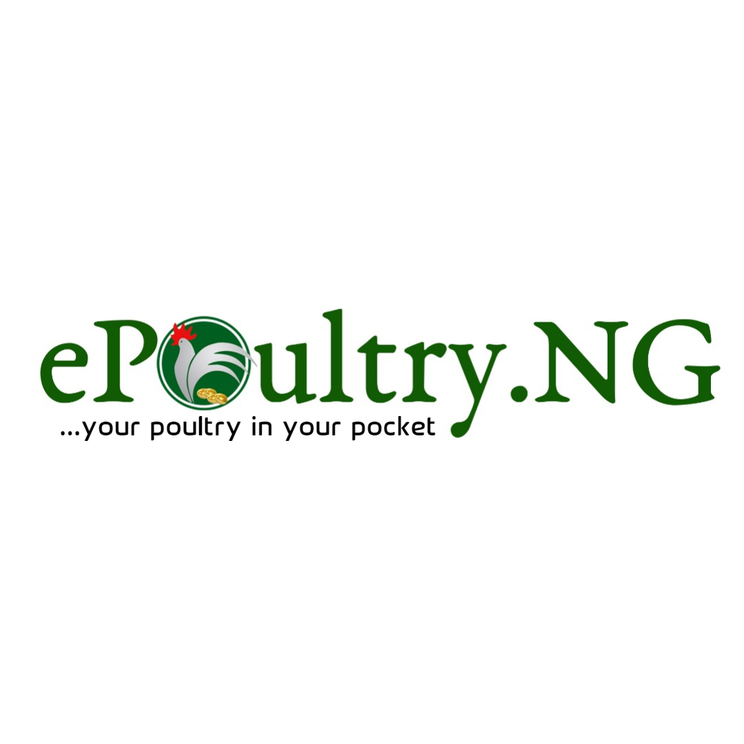 How to invest in Poultry farming online