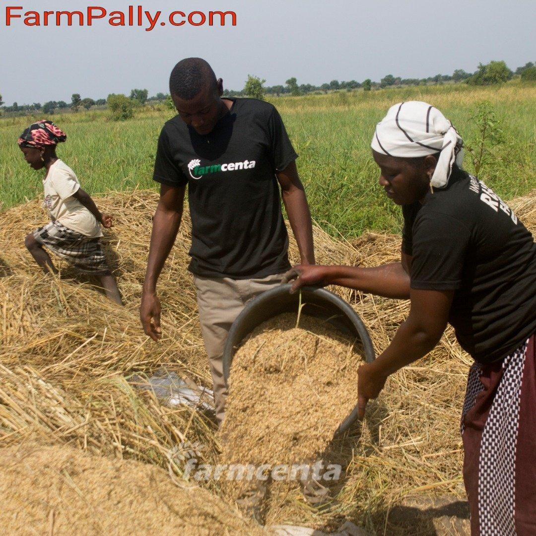 farmcenta agriculture crowdfunding investment in Nigeria