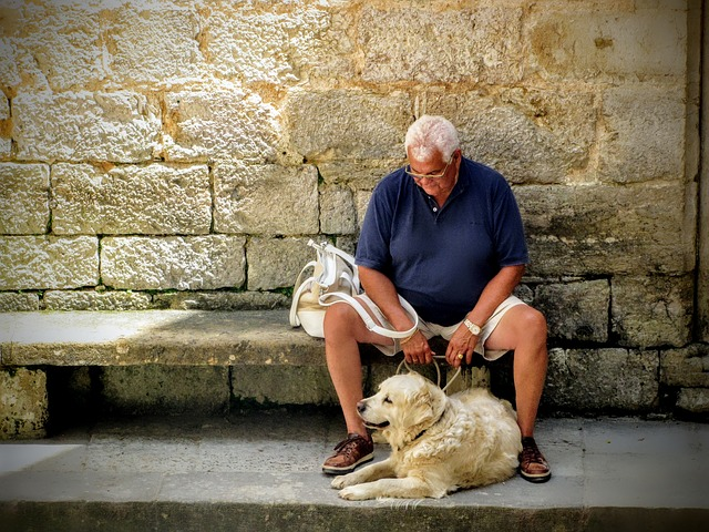 best dog breeds for seniors and benefits of pet therapy for retirees