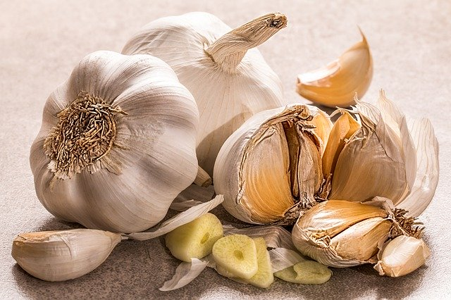 How to cultivate garlic plant