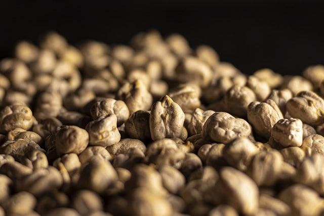 properties of gram seed (Cicer arietenum) and germination stages